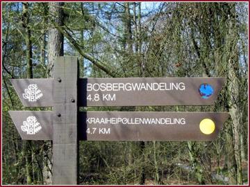 Wandelroutes vanaf de Bongerd