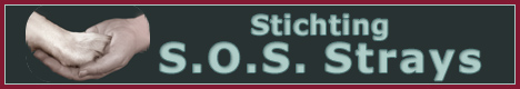 Banner Stichting S.O.S. Strays