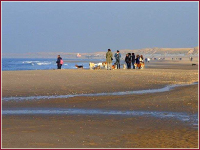 Strandopgang Petten aan Zee