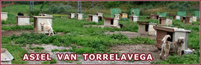 fotoserie asiel Torrelavega, klik om binnen te gaan